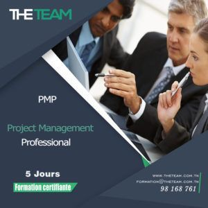 THE TEAM Tunisie - Formation PMI PMP Project Management Professional