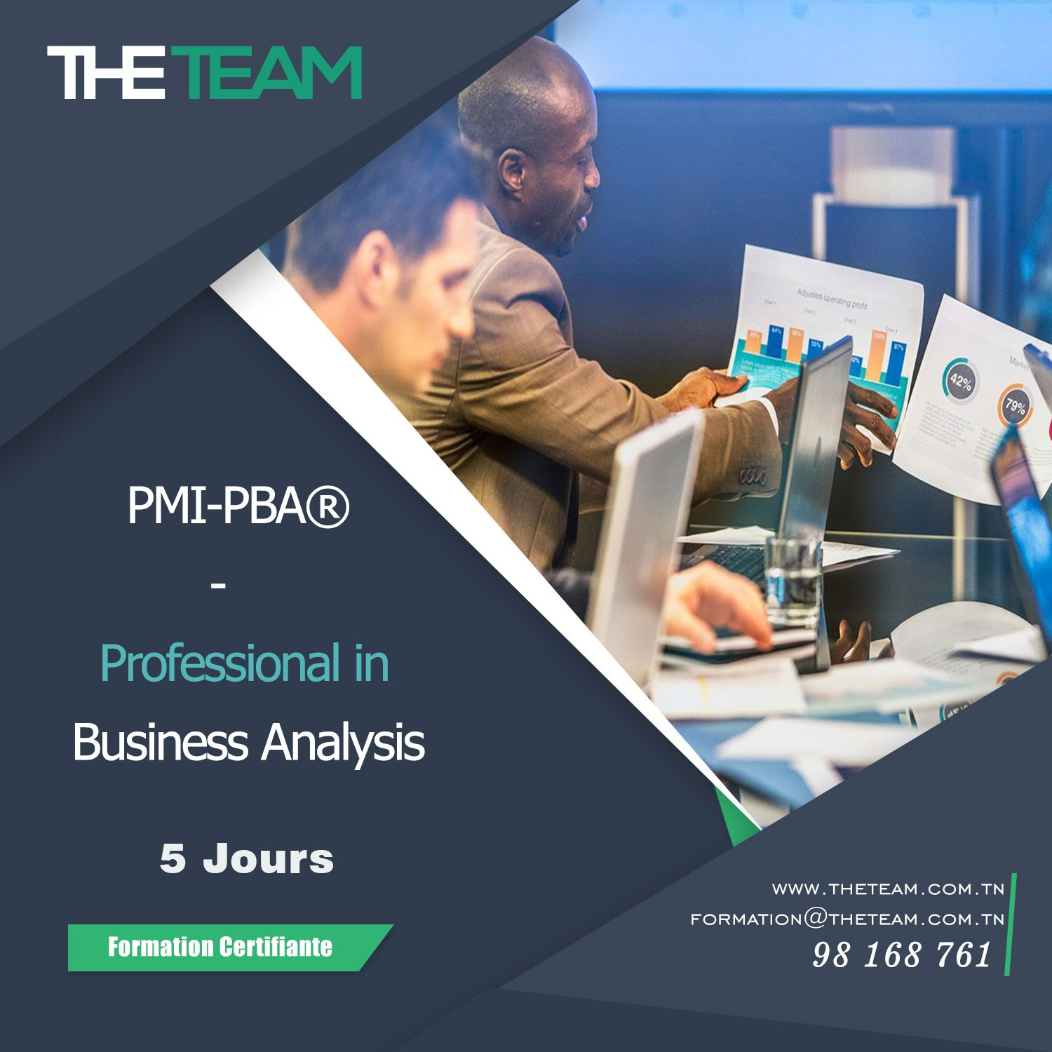 THE TEAM Tunisie PMI PBA - Professional in Business Analysis